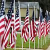 111114-DB-Veterans-Days-203