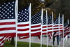 111116_VeteransDay_DB_58U0746_007