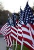111116_VeteransDay_DB_58U0728_001