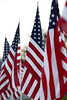 111116_VeteransDay_DB_58U0738_005