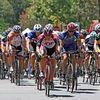 8472 2nd rider (blue kit, red helmet): Steve Jackura of Team Donate Life