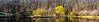 Meadowlark-3639-Pano