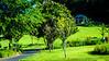 Meadowlark-4809-Edit