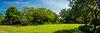 Meadowlark-1593-Pano