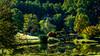 Meadowlark-9405-Edit