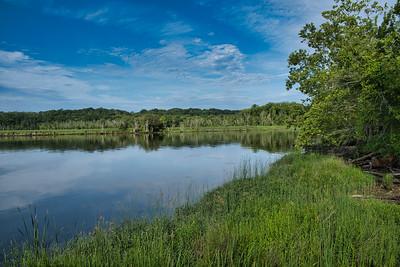 Marsh 4