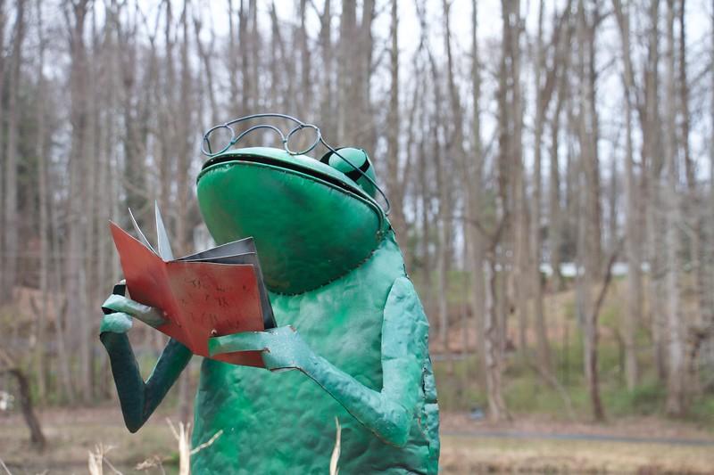 Froggy Reader
