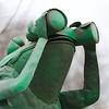 Frog With Binoculars