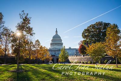 DC Fall-0663