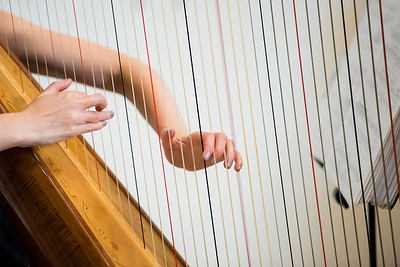 Detail image of a harpist playing at a black tie reception.