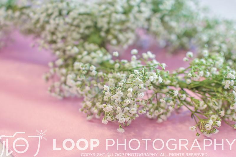20_LOOP_C&D_HighRes_018