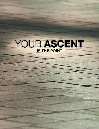 Your Ascent (The Seeker 5)