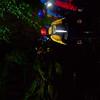 Gorge Walk 019