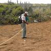 Bird monitoring workshop, Curaçao (2010)