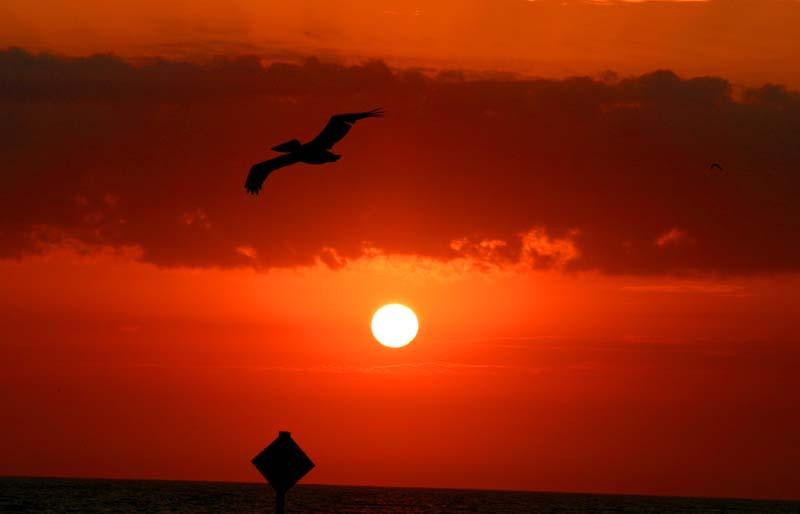 dcsnellgroves-sunset004