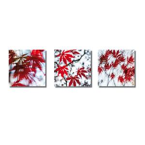 Pflanzen abstrakt | Triptychon Hamadryas