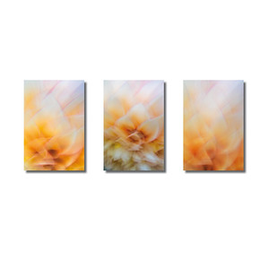 Pflanzen abstrakt | Triptychon Galatea