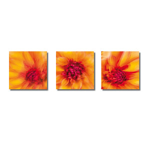 Pflanzen abstrakt | Triptychon Kyrene