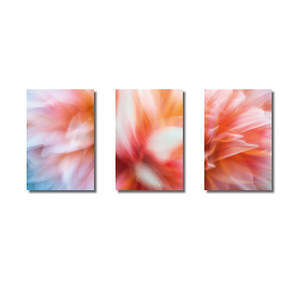Pflanzen abstrakt | Triptychon Echo