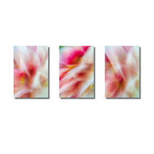 Pflanzen abstrakt | Triptychon Thetis