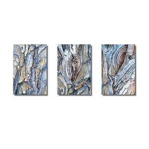 Pflanzenwelten | Triptychon Drachenbaum-Aloe I