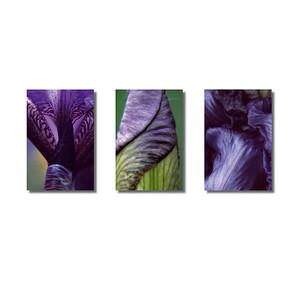 Pflanzenwelten | Triptychon Iris I