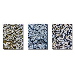 Steinstrukturen  | Triptychon Inishmore I