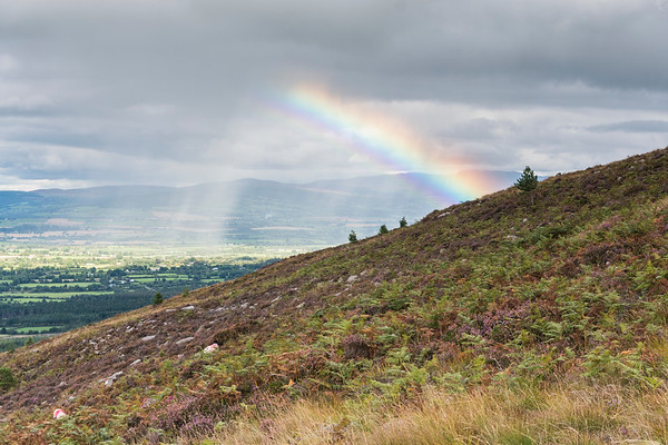 Knockmealdown Mountains, Wanderweg zum Sugarloaf Mountain