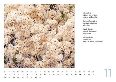 Foto-Lyrik Kalender 2018 November