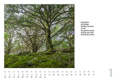 """Foto-Lyrik-Kalender 2020 """"An der Küste von Grünland"""" Januar"""