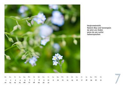 """Foto-Lyrik-Kalender 2020 """"An der Küste von Grünland"""" Juli"""