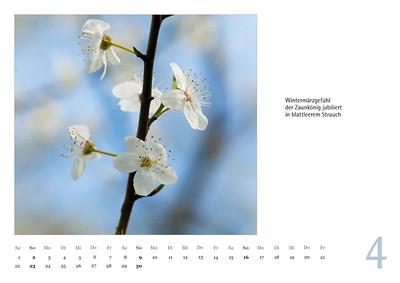 """Foto-Lyrik-Kalender 2017 """"Im Traumtänzerschritt"""" April"""