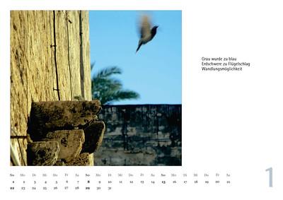 "Foto-Lyrik-Kalender 2017 ""Im Traumtänzerschritt"" Januar"