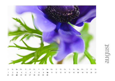 kalender2008-bild-neu-9