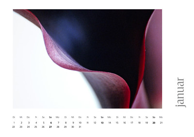 kalender2008-bild-neu-2