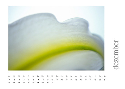 kalender2008-bild-neu-13
