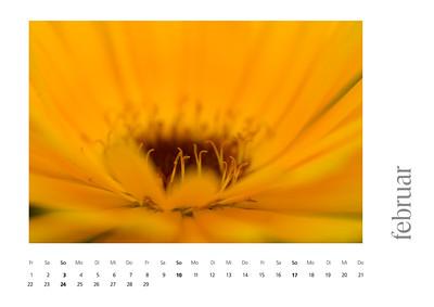 kalender2008-bild-neu-3