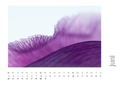 kalender2008-bild-neu-7