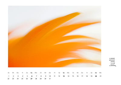 kalender2008-bild-neu-8