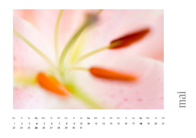 kalender2008-bild-neu-6