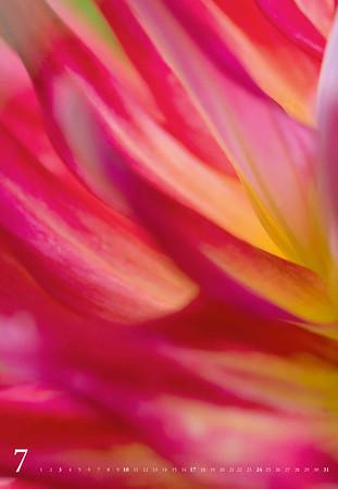 farbe-form-natur-2016-web-8