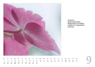 Foto-Lyrik-Kalender-2016-web-10