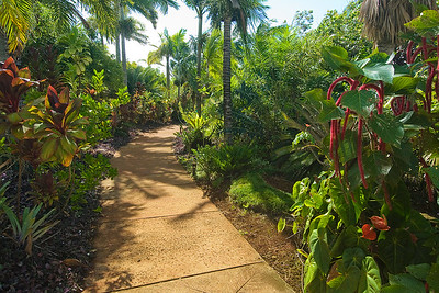 National Tropical Botanical Gardens, Kaua'i, Weg durch den Garten