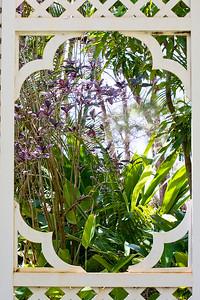 Blick auf verschiedene tropische Pflanzen durch das geschnitzte Holz eines kleinen Gartenpavillons in den National Tropical Botanical Gardens, Kauai
