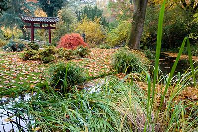 Teich und Eingangstor, Japanischer Garten Leverkusen