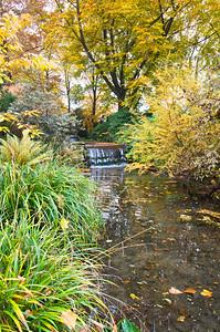 Teich und kleiner Wasserfall, Japanischer Garten Leverkusen