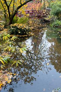 Bogenbrücke über einen Teich im herbstlichen GArten, Japanischer Garten Leverkusen