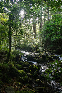 Killarney National Parc, Torc Waterfall