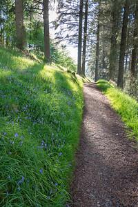 Wanderweg im Tal von Glenariffe, Co. Antrim