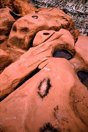 USA 2002 Utah Capitol Reef N.P.